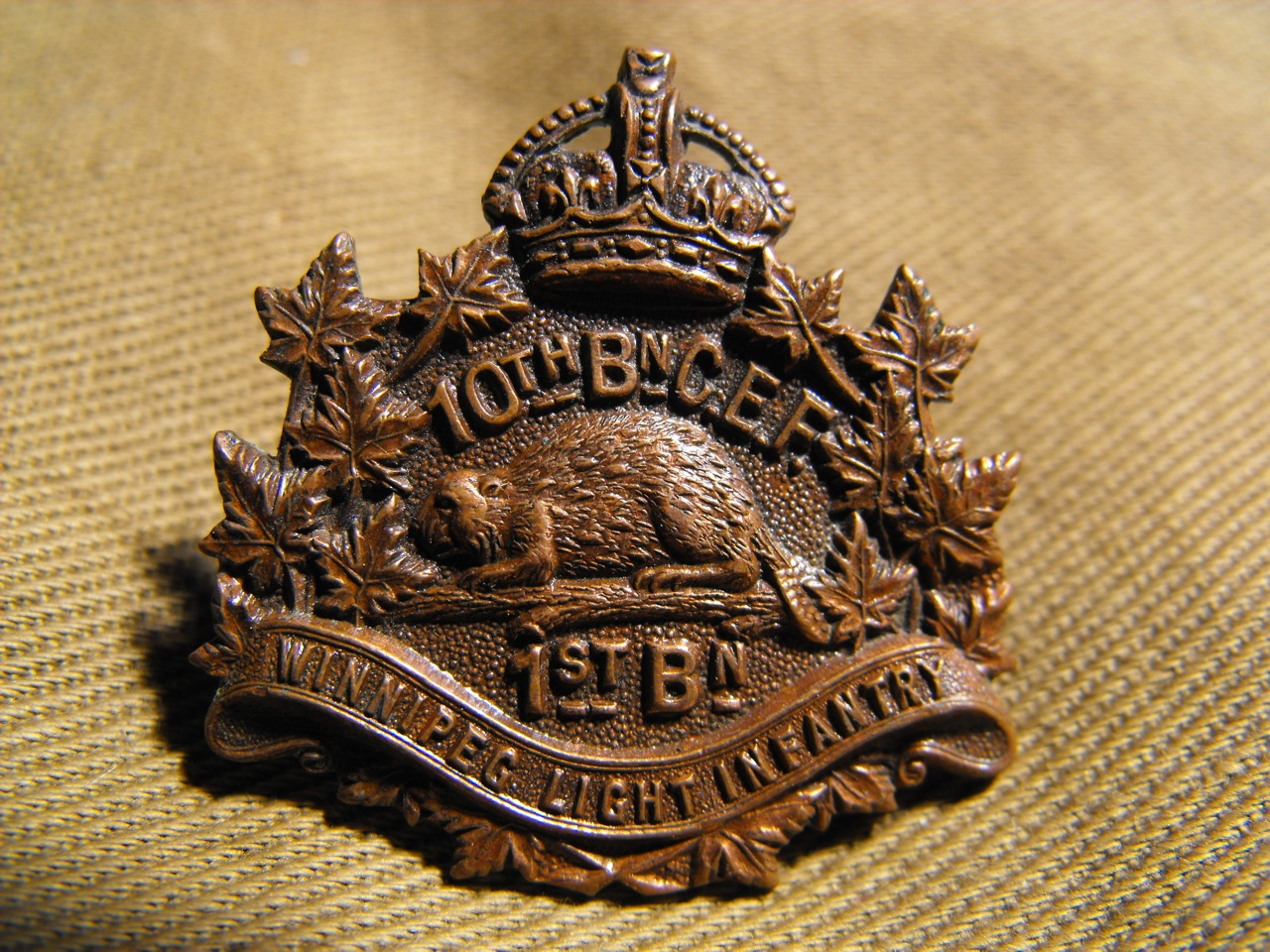 10th BN 1st BN Winnipeg, Alberta Collar Dog