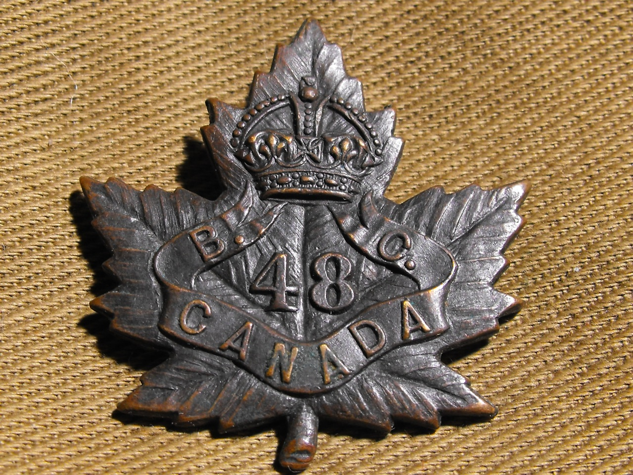 48th Bn B.C. Collar Dog