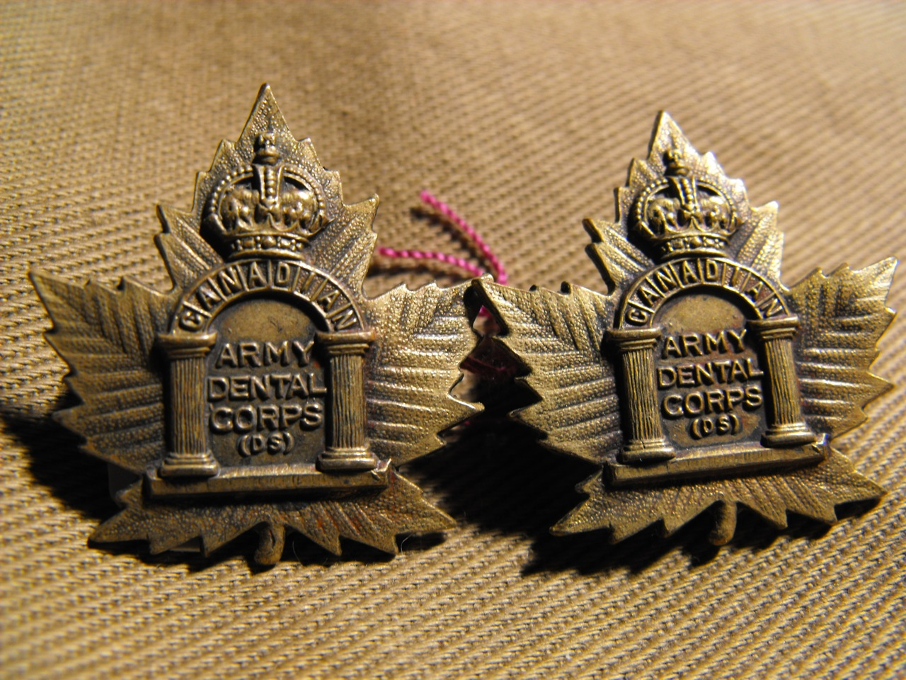 Cdn. Army Dental Corps (D.S.) Collar Dogs